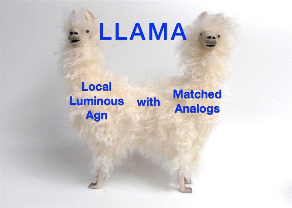 Our two-headed LLAMA consists of a sample of luminous AGNs and a matched sample of inactive galaxies.