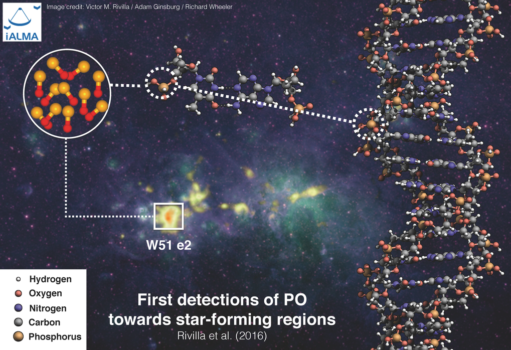 "<p class=""Body"">Several molecular species have been identified by the astronomers (methanol, methyl formate…) in gas clouds in space. Now the key prebiotic molecule PO was detected for the fist time in the star-forming regions W51 e1/e2 and W3(OH).</p>"