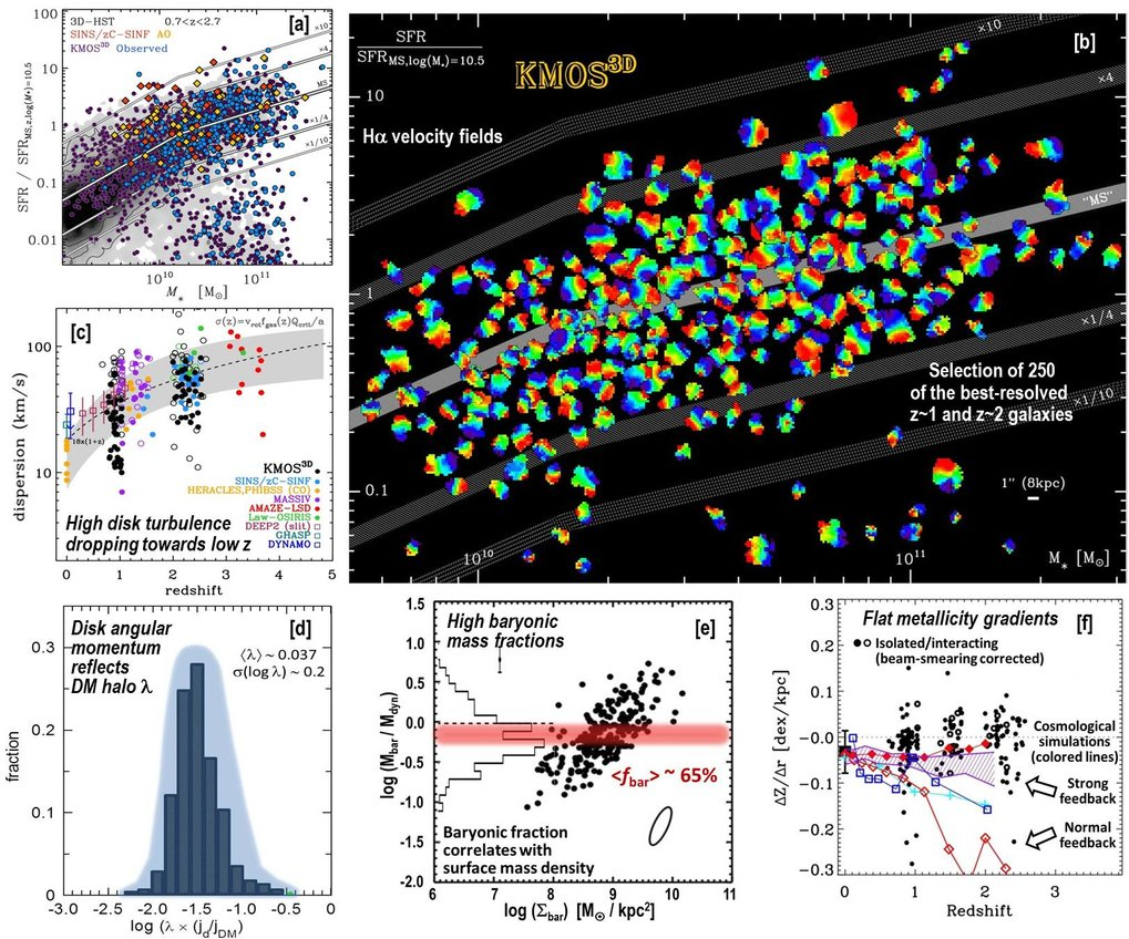 "[a] The KMOS3D survey spans a wide range of galaxy mass and star formation rate (SFR) at 0.7 < z < 2.7, overlapping with and substantially extending the ranges covered by our previous SINFONI ""SINS/zC-SINF"" survey. [b, c] With the first 2.5-year results for 564 galaxies (80% detection fraction) from KMOS3D, the prevalence of rotating disks among star-forming galaxies (≳ 70%) and the significant increase at higher redshift in gas velocity dispersion (∝ 1+z) are now firmly established. About 2/3 of the detected massive sub-main sequence galaxies have unexpectedly strong Hα emission given their UV and IR luminosities — possibly signaling rejuvenation — and are often extended rotating disks. [d] The distribution of inferred halo-scale angular momenta of the galaxies is consistent with the theoretical predictions for their dark matter halos in terms of mean spin parameter (〈λ〉 ~ 0.037) and dispersion (σ(log λ) ~ 0.2), suggesting conservation of the net angular momentum of baryons as they settle onto the disks. [e] The dynamical masses from KMOS kinematics, together with the stellar and gas mass distributions derived from HST imaging and our molecular gas mass – specific SFR scaling relations (see below), imply that high-z disks are on average strongly baryon-dominated, with baryon-to-total mass fractions of ~ 65% within their half-light radius and baryon-to-dark matter fractions of ~ 5% within their dark halo virial radius. [f] The inferred gas-phase metallicity gradients from 200 star-forming galaxies, tripling existing samples, are typically flat, in line with cosmological simulations involving strong feedback and the observed ubiquitous powerful outflows discovered in our KMOS3D and SINS/zC-SINF surveys (see below)."